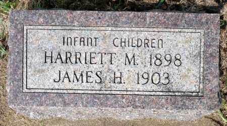 SCHMIDT, JAMES H. - Minnehaha County, South Dakota   JAMES H. SCHMIDT - South Dakota Gravestone Photos