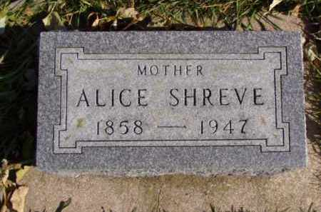 JANUARY SHREVE, ALICE - Minnehaha County, South Dakota | ALICE JANUARY SHREVE - South Dakota Gravestone Photos