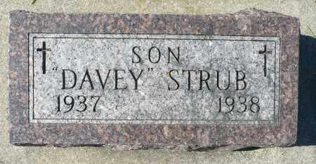 STRUB, DAVEY - Minnehaha County, South Dakota   DAVEY STRUB - South Dakota Gravestone Photos