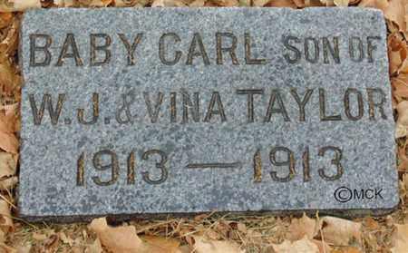 TAYLOR, CARL - Minnehaha County, South Dakota | CARL TAYLOR - South Dakota Gravestone Photos