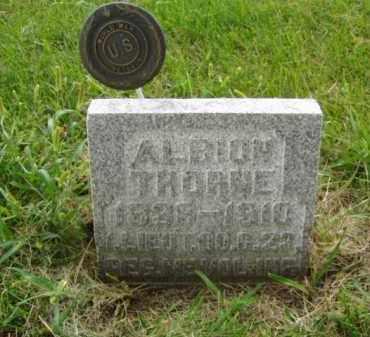 THORNE, ALBION - Minnehaha County, South Dakota | ALBION THORNE - South Dakota Gravestone Photos