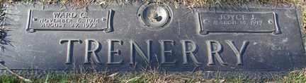 TRENERRY, WARD C. - Minnehaha County, South Dakota | WARD C. TRENERRY - South Dakota Gravestone Photos
