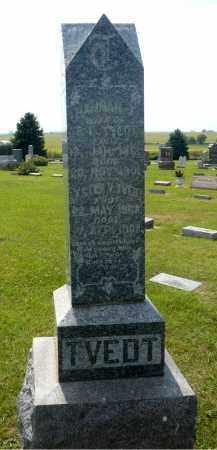 TVEDT, LESTER V. - Minnehaha County, South Dakota   LESTER V. TVEDT - South Dakota Gravestone Photos