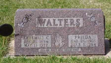 WALTERS, ARTEMUS C. - Minnehaha County, South Dakota | ARTEMUS C. WALTERS - South Dakota Gravestone Photos