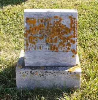 WALTERS, MILES - Minnehaha County, South Dakota | MILES WALTERS - South Dakota Gravestone Photos