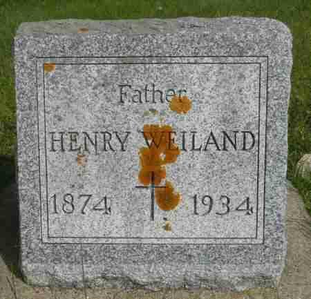 WEILAND, HENRY - Minnehaha County, South Dakota   HENRY WEILAND - South Dakota Gravestone Photos