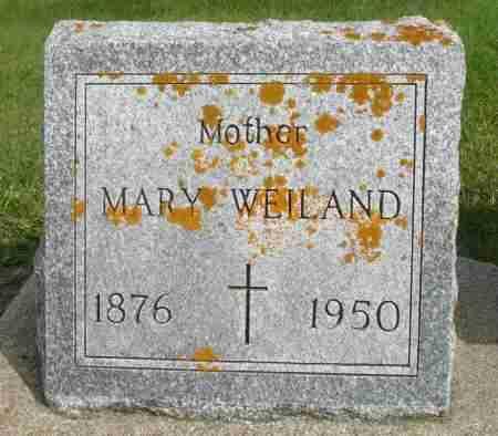 WEILAND, MARY - Minnehaha County, South Dakota   MARY WEILAND - South Dakota Gravestone Photos
