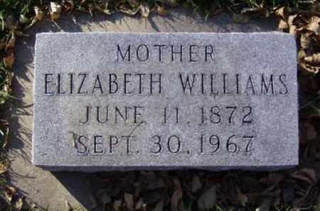 WILLIAMS, ELIZABETH - Minnehaha County, South Dakota | ELIZABETH WILLIAMS - South Dakota Gravestone Photos