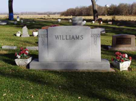 WILLIAMS, JAMES DENNIS - Minnehaha County, South Dakota | JAMES DENNIS WILLIAMS - South Dakota Gravestone Photos
