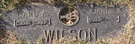 WILSON, JOANNE A. - Minnehaha County, South Dakota | JOANNE A. WILSON - South Dakota Gravestone Photos