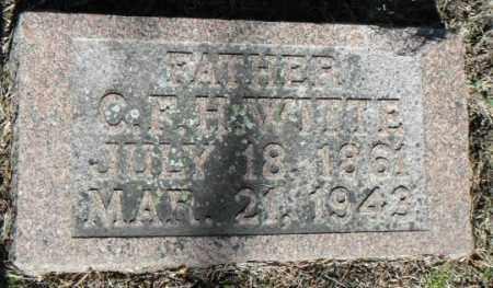WITTE, C. F. H. - Minnehaha County, South Dakota   C. F. H. WITTE - South Dakota Gravestone Photos