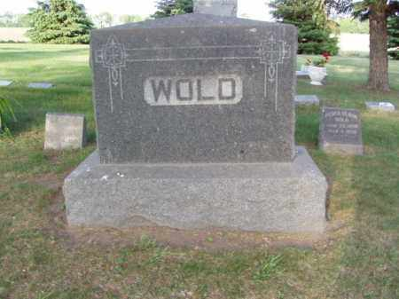 WOLD, PEDER OLSON - Minnehaha County, South Dakota | PEDER OLSON WOLD - South Dakota Gravestone Photos