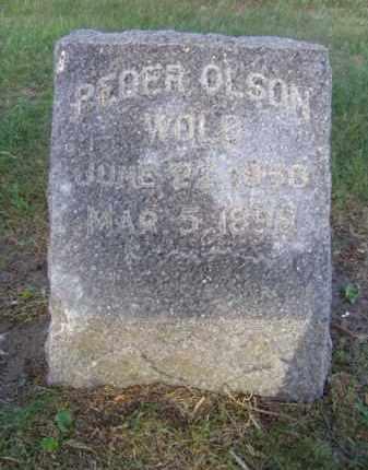 WOLD, PEDER OLSON - Minnehaha County, South Dakota | PEDER OLSON WOLD - South Dakota Gravestone Photos