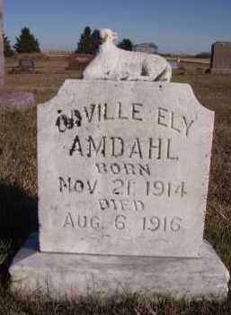 AMDAHL, ORVILLE ELY - Moody County, South Dakota | ORVILLE ELY AMDAHL - South Dakota Gravestone Photos