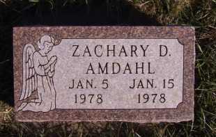 AMDAHL, ZACHARY D - Moody County, South Dakota | ZACHARY D AMDAHL - South Dakota Gravestone Photos