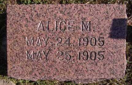 ARMS, ALICE M - Moody County, South Dakota | ALICE M ARMS - South Dakota Gravestone Photos