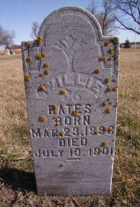 BATES, WILLIE - Moody County, South Dakota | WILLIE BATES - South Dakota Gravestone Photos