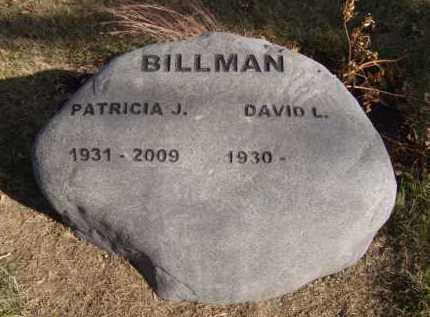 BILLMAN, DAVID L - Moody County, South Dakota | DAVID L BILLMAN - South Dakota Gravestone Photos