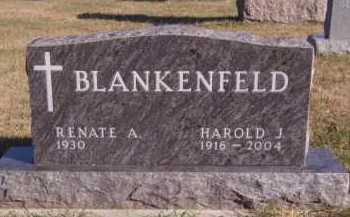 BLANKENFELD, RENATE A - Moody County, South Dakota | RENATE A BLANKENFELD - South Dakota Gravestone Photos