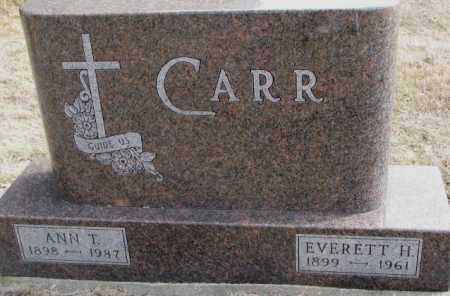 CARR, ANN T. - Moody County, South Dakota | ANN T. CARR - South Dakota Gravestone Photos