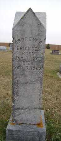 ERICKSON, ANDREW P - Moody County, South Dakota | ANDREW P ERICKSON - South Dakota Gravestone Photos