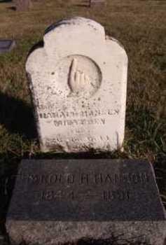 HANSON, HAROLD H (2ND VIEW) - Moody County, South Dakota | HAROLD H (2ND VIEW) HANSON - South Dakota Gravestone Photos