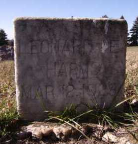 HARMS, LEONARD E - Moody County, South Dakota | LEONARD E HARMS - South Dakota Gravestone Photos