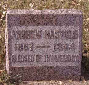 HASVOLD, ANDREW - Moody County, South Dakota | ANDREW HASVOLD - South Dakota Gravestone Photos
