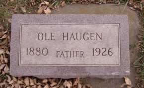HAUGEN, OLE - Moody County, South Dakota | OLE HAUGEN - South Dakota Gravestone Photos