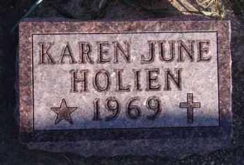 HOLIEN, KAREN JUNE - Moody County, South Dakota   KAREN JUNE HOLIEN - South Dakota Gravestone Photos