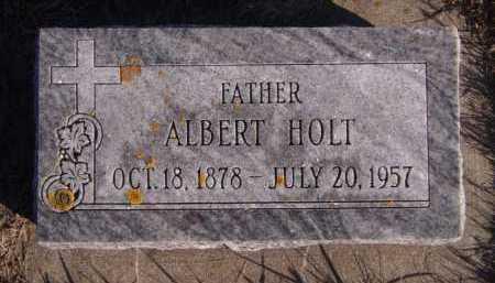 HOLT, ALBERT - Moody County, South Dakota | ALBERT HOLT - South Dakota Gravestone Photos