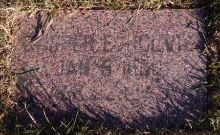 HOLVIG, CASPER - Moody County, South Dakota   CASPER HOLVIG - South Dakota Gravestone Photos
