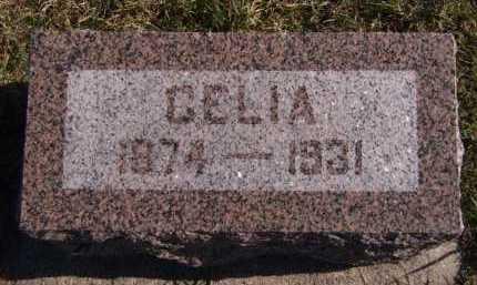 JENSEN, CELIA - Moody County, South Dakota | CELIA JENSEN - South Dakota Gravestone Photos