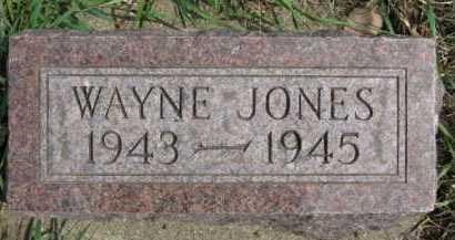 JONES, WAYNE - Moody County, South Dakota   WAYNE JONES - South Dakota Gravestone Photos
