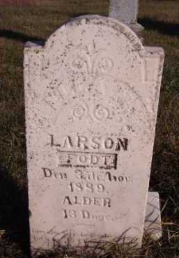 LARSON, ELLA M (?) - Moody County, South Dakota | ELLA M (?) LARSON - South Dakota Gravestone Photos