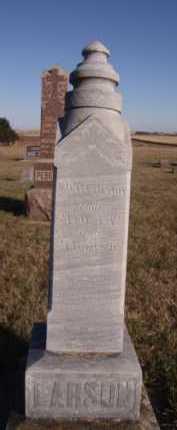 LARSON, H ELLEN - Moody County, South Dakota | H ELLEN LARSON - South Dakota Gravestone Photos