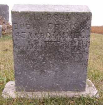 LARSON, JOHAN - Moody County, South Dakota   JOHAN LARSON - South Dakota Gravestone Photos