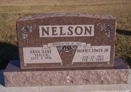 NELSON, MORRIS EDWIN JR - Moody County, South Dakota | MORRIS EDWIN JR NELSON - South Dakota Gravestone Photos