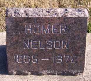 NELSON, HOMER - Moody County, South Dakota | HOMER NELSON - South Dakota Gravestone Photos