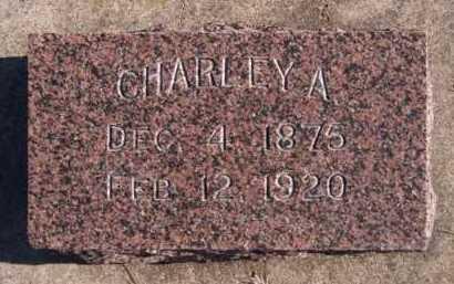 NEWOMER, CHARLEY A - Moody County, South Dakota | CHARLEY A NEWOMER - South Dakota Gravestone Photos