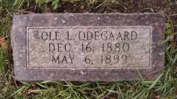 ODEGAARD, OLE L - Moody County, South Dakota | OLE L ODEGAARD - South Dakota Gravestone Photos