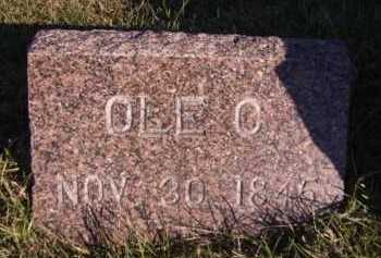 OIHUS, OLE C - Moody County, South Dakota | OLE C OIHUS - South Dakota Gravestone Photos