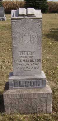 OLSON, EMILIE - Moody County, South Dakota | EMILIE OLSON - South Dakota Gravestone Photos