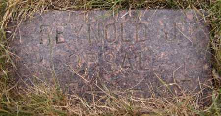 OPPSAL, JOHN REYNALD - Moody County, South Dakota | JOHN REYNALD OPPSAL - South Dakota Gravestone Photos
