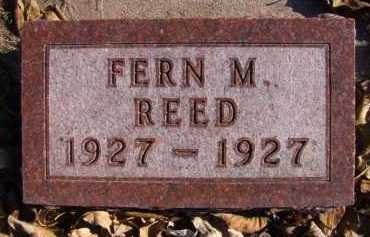 REED, FERN M - Moody County, South Dakota   FERN M REED - South Dakota Gravestone Photos