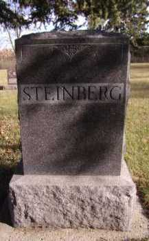 STEINBERG, FAMILY - Moody County, South Dakota | FAMILY STEINBERG - South Dakota Gravestone Photos