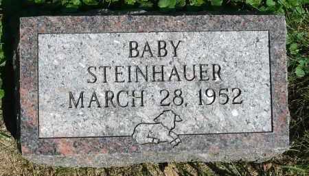 STEINHAUER, BABY - Moody County, South Dakota   BABY STEINHAUER - South Dakota Gravestone Photos
