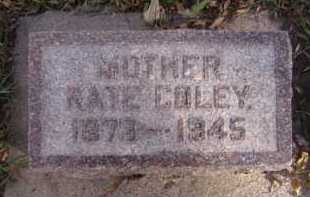 COLEY TOATES, KATE - Moody County, South Dakota | KATE COLEY TOATES - South Dakota Gravestone Photos
