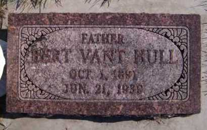 VANT HUL, BERT - Moody County, South Dakota | BERT VANT HUL - South Dakota Gravestone Photos