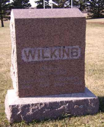 WILKINS, FAMILY - Moody County, South Dakota | FAMILY WILKINS - South Dakota Gravestone Photos